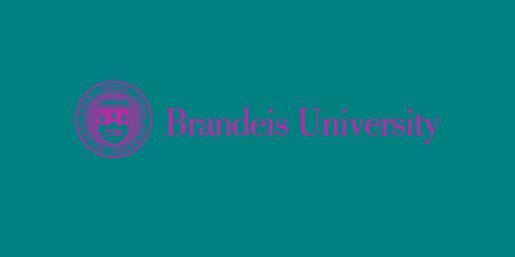 Brandeis University Checks