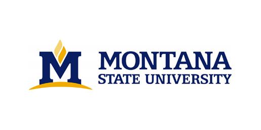 Montana State University Checks